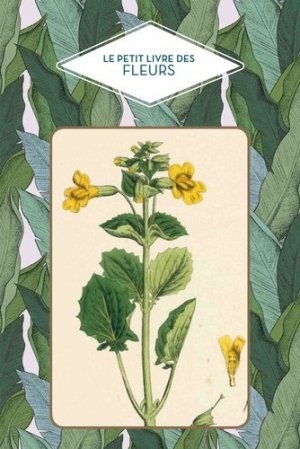 Le petit livre des fleurs - papier cadeau - 9782379640728 -