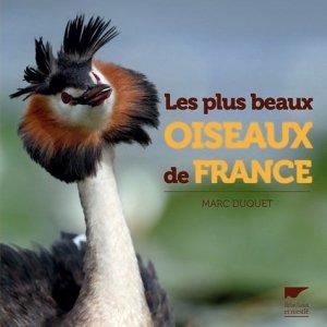 Les plus beaux oiseaux de france - delachaux et niestle - 9782603021392 -