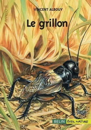 Le grillon - belin / éveil nature - 9782701142975 -