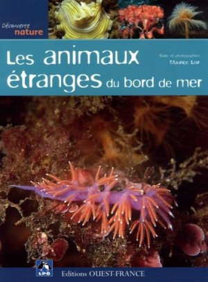 Les animaux étranges du bord de mer - ouest-france - 9782737337710 -