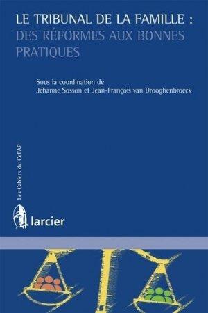 Le tribunal de la famille. Des réformes aux bonnes pratiques - Éditions Larcier - 9782807900196 -