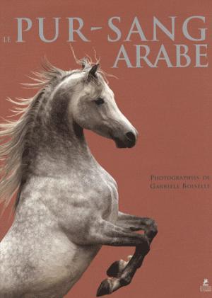 Le Pur-sang Arabe - place des victoires - 9782809901542 -