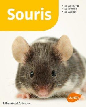 Les souris - ulmer - 9782841389728 -