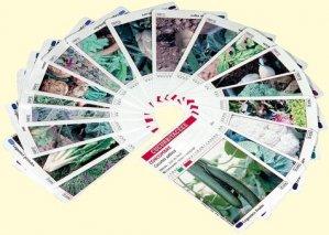 Légum'cartes - educagri - 9782844443229 -