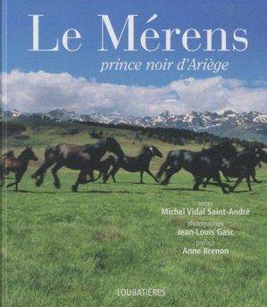 Le Mérens - loubatieres nouvelles editions  - 9782862666051 -