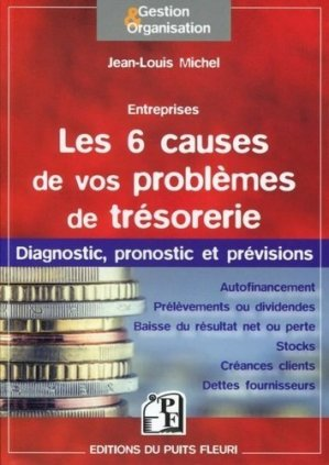 Les 6 causes de vos problèmes de trésorerie - Puits Fleuri - 9782867395758 -