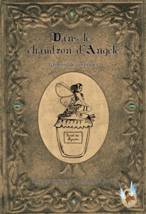 Le chaudron d'Angèle - La porte littéraire - 9782919325160 -