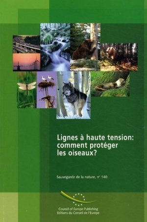 Lignes à haute tension : comment protéger les oiseaux ? Convention relative à la conservation de la vie sauvage et du milieu naturel de l'Europe - Conseil de l'Europe - 9789287159007 -
