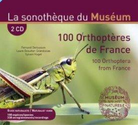 100 orthoptères de France (2 CD + livret 48 pages bilingue) - chiff chaff - 3770001513560 -