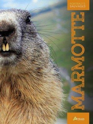 Marmotte - Artémis - 9782816015621 -