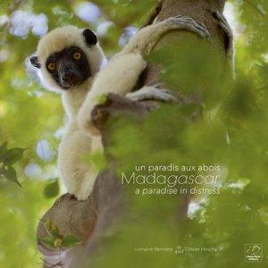 Madagascar un paradis aux abois - oiseau plume - 9782953534382 -