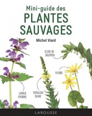 Mini-guide des plantes sauvages - larousse - 9782035983916 -