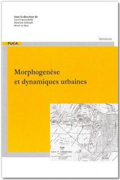 Morphogenèse et dynamiques urbaines : Les ateliers de morphologie EHESS-EnsAD - cerema - 9782111381506 -