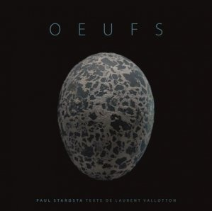 Oeufs - 5 continents - 9788874398355 -