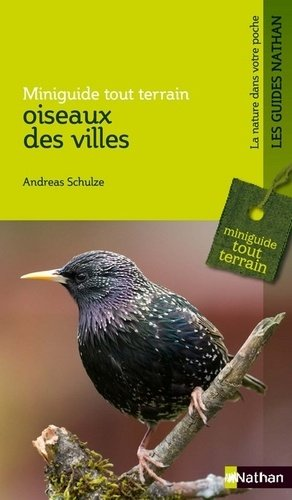 Oiseaux des villes - nathan - 9782092786673 -