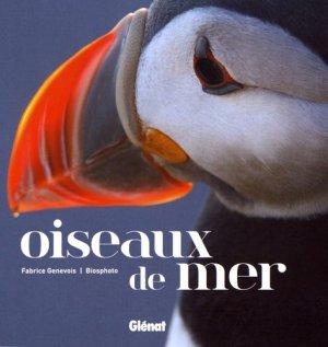 Oiseaux de mer-glenat-9782344021484