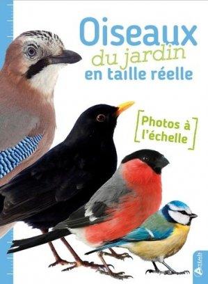 Oiseaux du jardin en taille réelle - artemis - 9782816011579 -