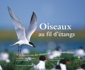 Oiseaux au fil d'étangs - biotope - 9782914817097 -