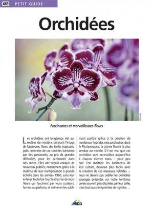 Orchidées - aedis - 9782842599522