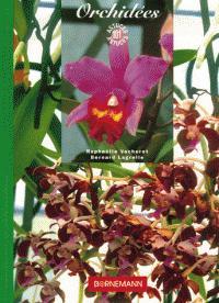 Orchidées - bornemann - 9782851826596 -