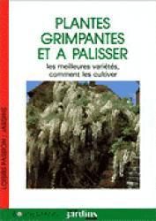 Plantes grimpantes et à palisser - bornemann - 9782851824363 -