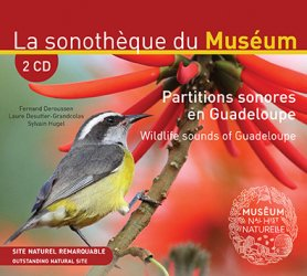 Partitions sonores en Guadeloupe - chiff chaff - 3770001513553 -