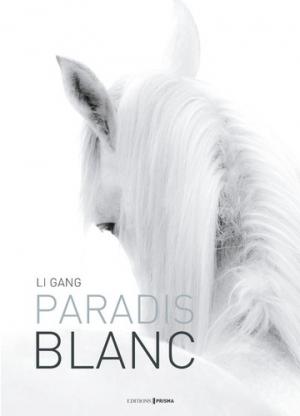 Paradis blanc - prisma - 9782810415687 -