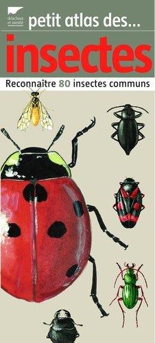 Petit atlas des insectes - delachaux et niestle - 9782603014394 -