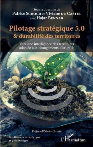 Pilotage stratégique 5.0 et durabilité des territoires - l'harmattan - 9782343217383 -