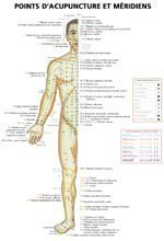 Planches des points d'acupuncture et méridiens - phu-xuan - 2224485505739 -