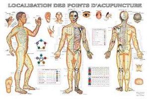Planche de localisation des points d'acupuncture - phu-xuan - 2224489793675 -