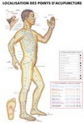 Planches de localisation des points d'acupuncture-phu-xuan-2224489795884