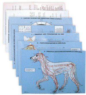 Planches d'acupuncture vétérinaire : chien et chat - phu-xuan - 2224490660904 -