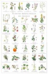 Plantes médicinales de France - gulf stream  - 2225012453301 -