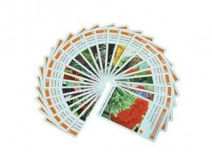 Planti'cartes. Jeux de reconnaissance des plantes exotiques et d'ornement - Avec 62 cartes à jouer - Educagri - 9782844443274 -