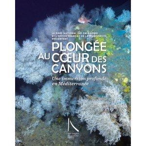 Plongée Au Coeur Des Canyons - les pages du gabier - 9782917497050 -