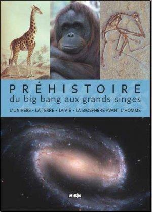 Préhistoire, du big bang aux grands singes - msm - 9782350801544