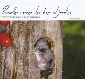 Prunelles noires des bois et jardins - du rat d'or - 9782955738306 -