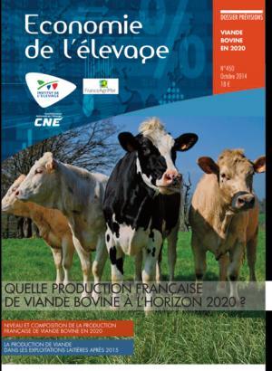Quelle production française de viande bovine à l'horizon 2020 ? - technipel / institut de l'elevage - 2224579466670 -