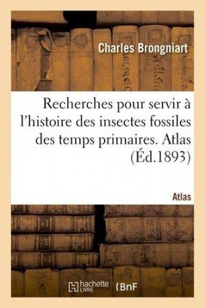 Recherches pour servir à l'histoire des insectes fossiles des temps primaires - Hachette/BnF - 9782329413846 -
