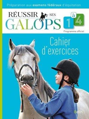 Réussir ses galops 1 à 4 / cahier d'exercices - belin - 9782701164274 -
