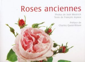 Roses anciennes - cyel - 9782362610004