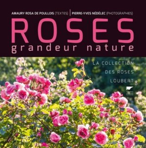 Roses grandeur nature - delachaux et niestle - 9782603025635