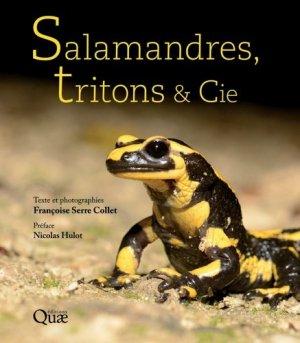 Salamandres, tritons & cie - quae - 9782759230709 -