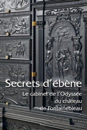 Secrets d'ébène - faton - 9782878441918 -