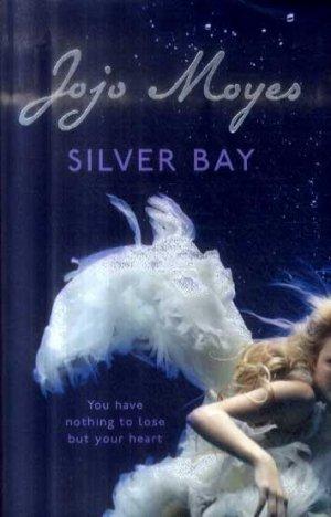 Silver Bay - hodder and stoughton - 9780340895931 -