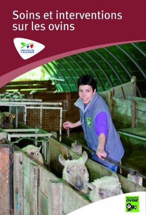 Soins et interventions sur les ovins - volume 1 - technipel / institut de l'elevage - 2224782627165 -