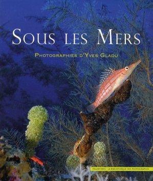 Sous les mers - palantines - 9782356780928 -