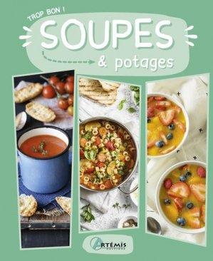 Soupes & potages - artemis - 9782816014655 - https://fr.calameo.com/read/000015856c4be971dc1b8
