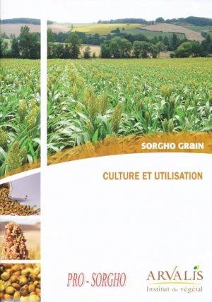 Sorgho grain - Culture et utilisation - arvalis - 9782817900353 -